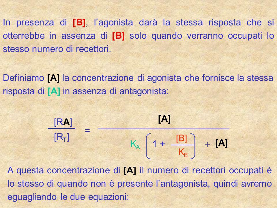In presenza di [B], l'agonista darà la stessa risposta che si otterrebbe in assenza di [B] solo quando verranno occupati lo stesso numero di recettori.
